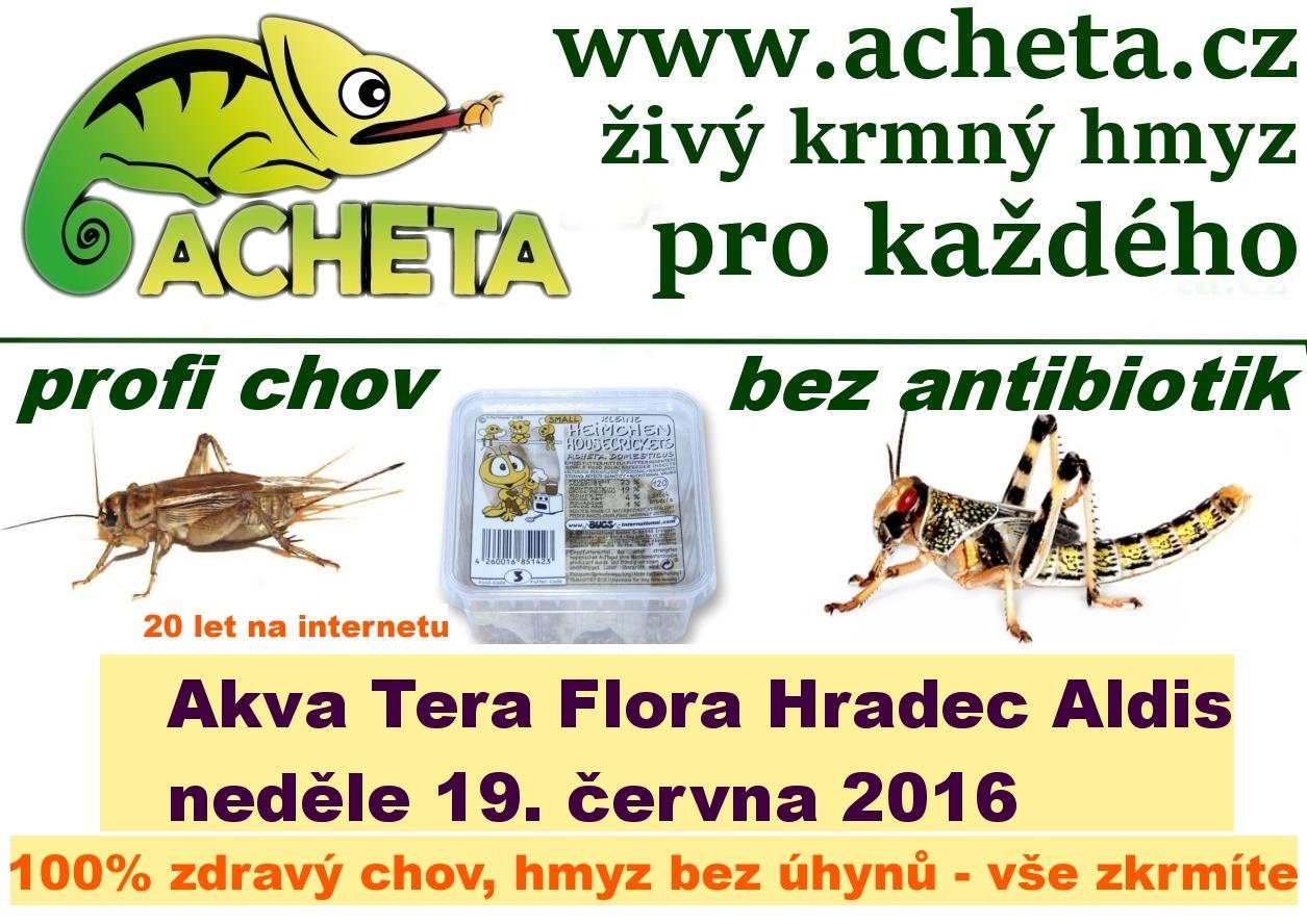 Burza Akva Tera Flora - Hradec Králové ALDIS - 19. června 2016