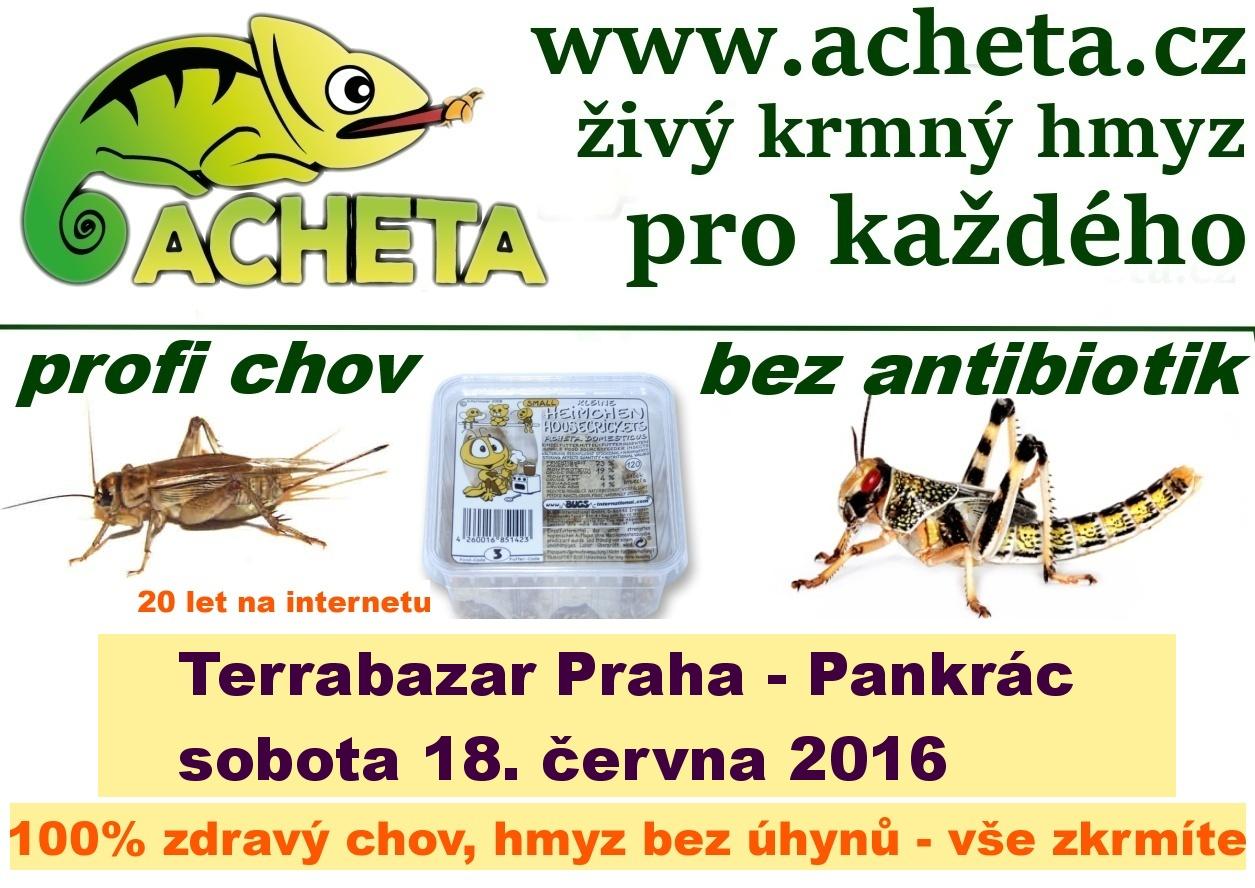 Terrabazar v Praze 18. června 2016 - Konferenční centrum City