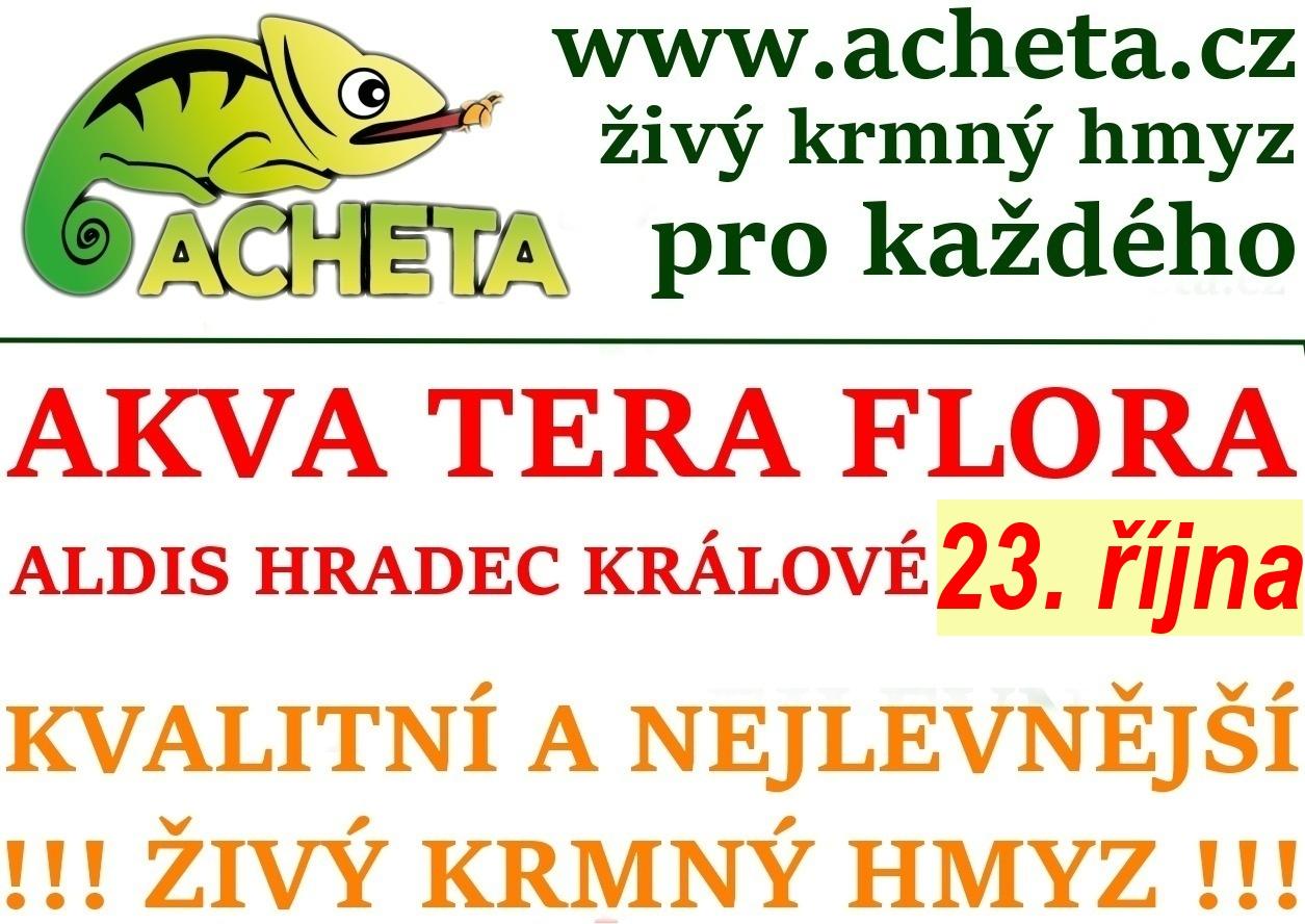 Burza Akva Tera Flora - Hradec Králové ALDIS - 23. října 2016