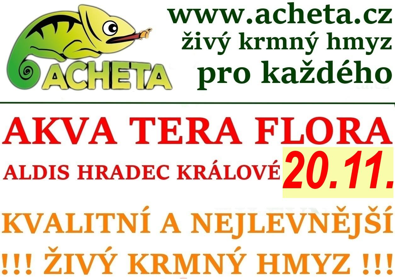 Burza Akva Tera Flora - Hradec Králové ALDIS - 20. listopadu 2016