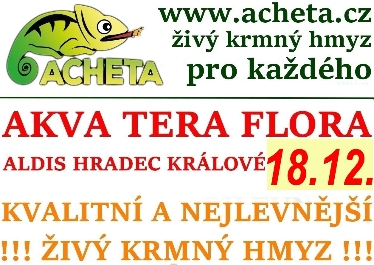 Burza Akva Tera Flora - Hradec Králové ALDIS - 18. prosince 2016