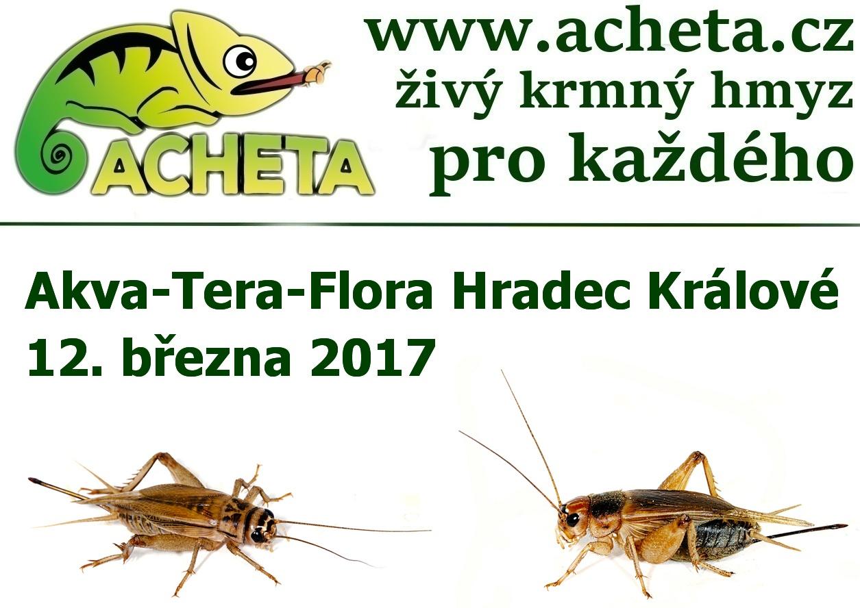 Burza Akva Tera Flora - Hradec Králové ALDIS - 12. března 2017