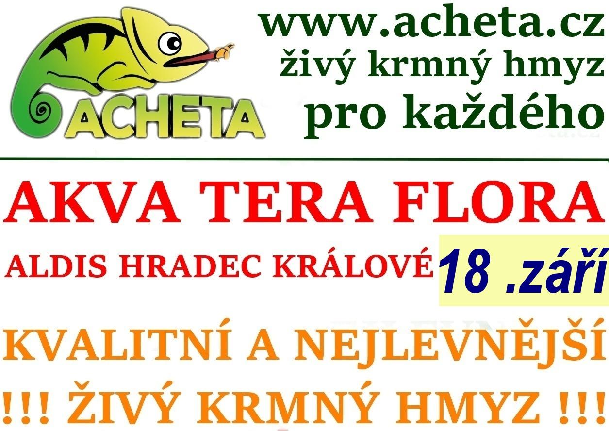 Burza Akva Tera Flora - Hradec Králové ALDIS - 18. září 2016