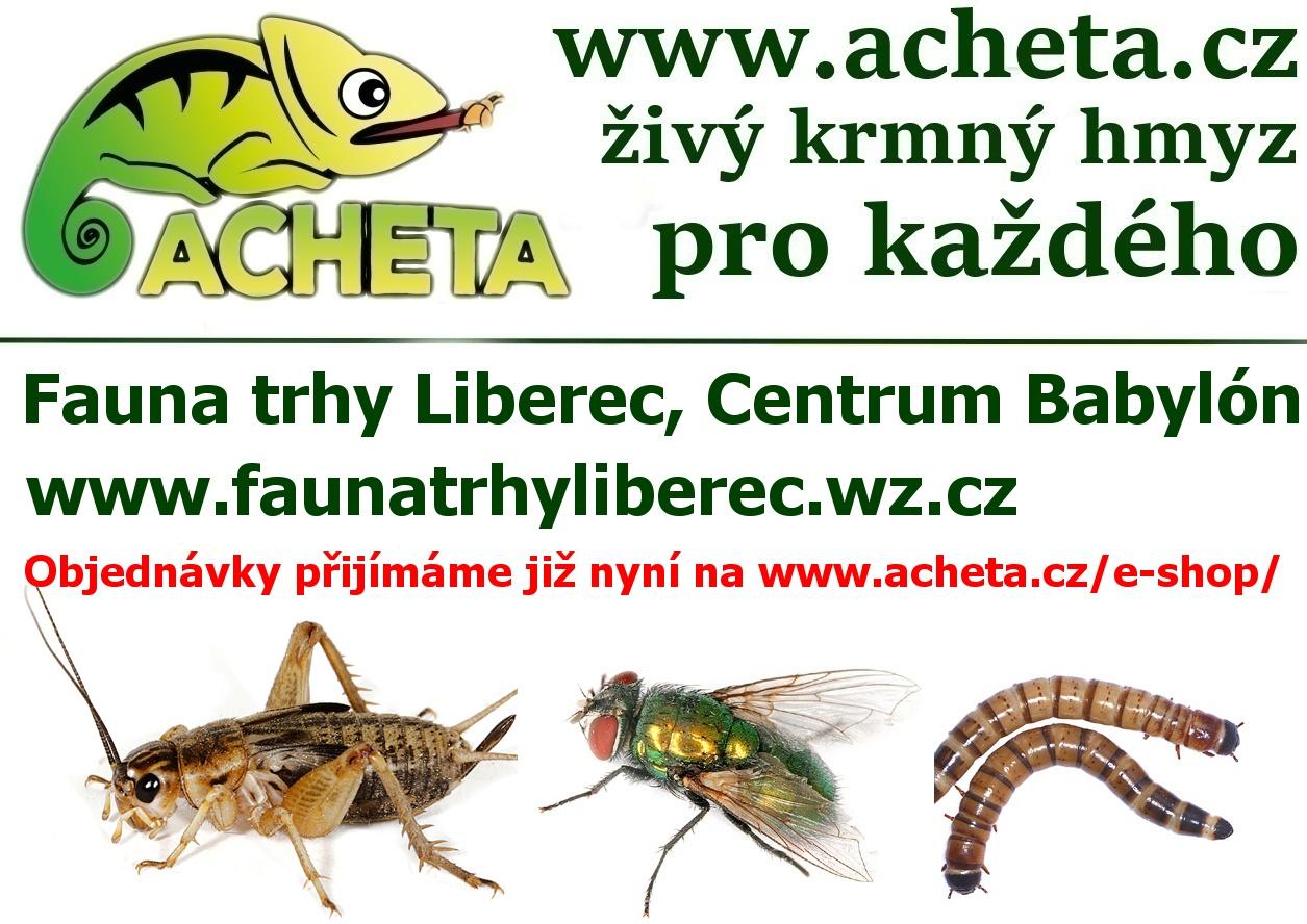 Fauna trhy v Liberci 25. března 2017 Centrum Babylon