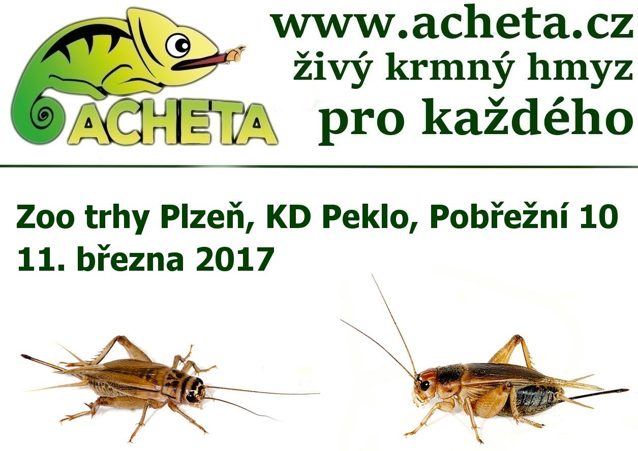 ZOO Trhy v PLZNI 11. března 2017 KD Peklo