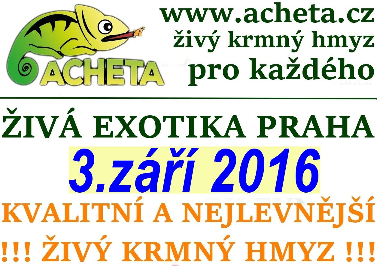 ŽIVÁ EXOTIKA Praha - Holešovice v sobotu 3. září 2016