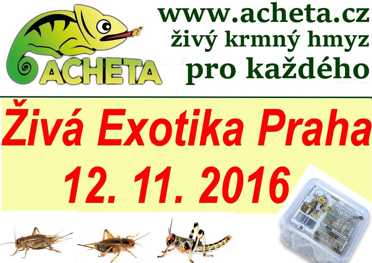 ŽIVÁ EXOTIKA Praha - Holešovice v sobotu 12. listopadu 2016