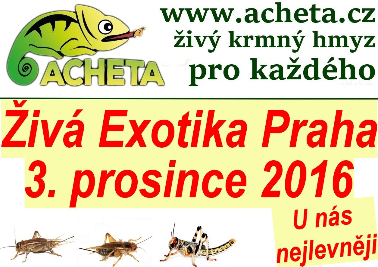 ŽIVÁ EXOTIKA Praha - Holešovice v sobotu 3. prosince 2016