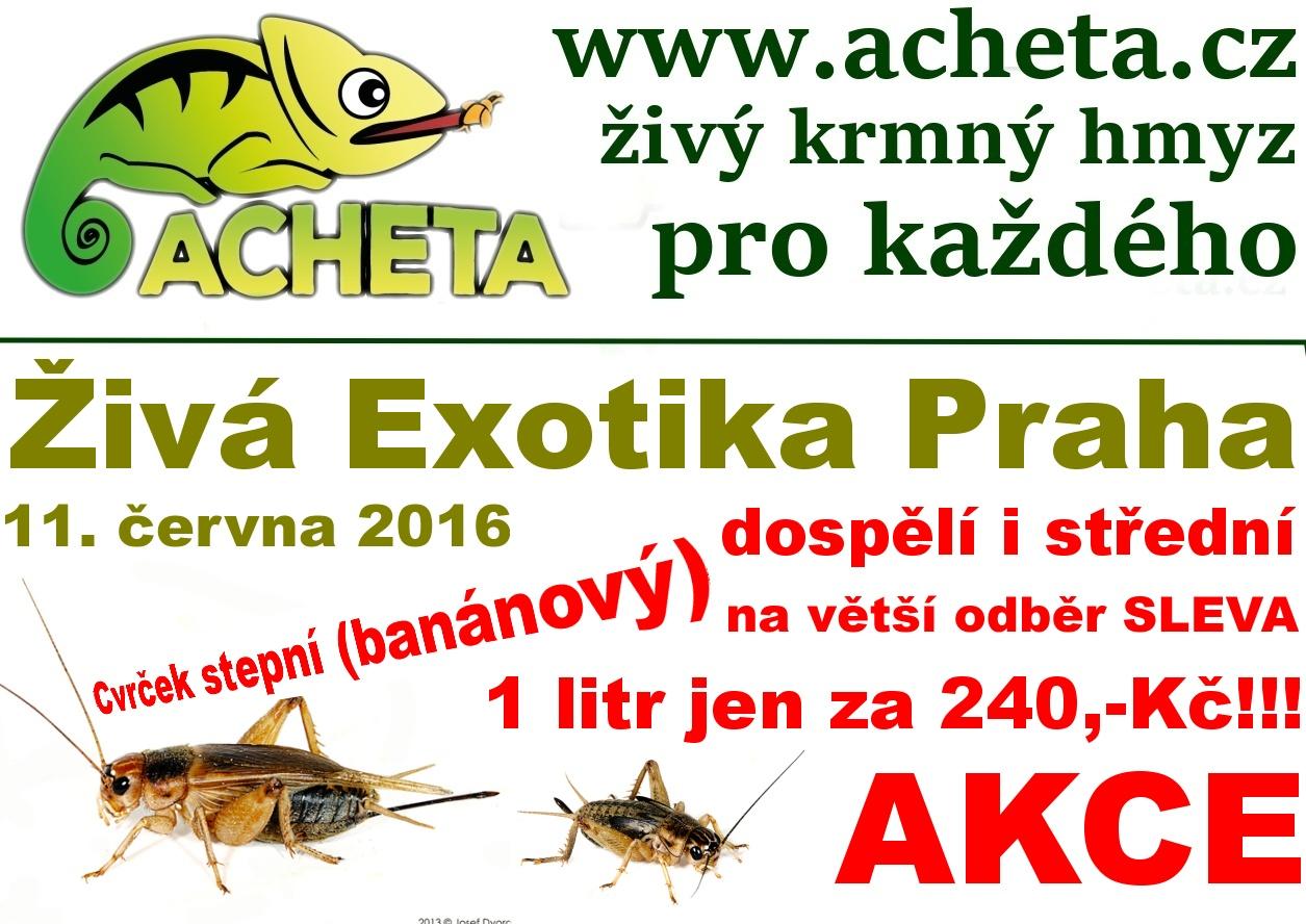 ŽIVÁ EXOTIKA Praha - Holešovice v sobotu 11. června 2016