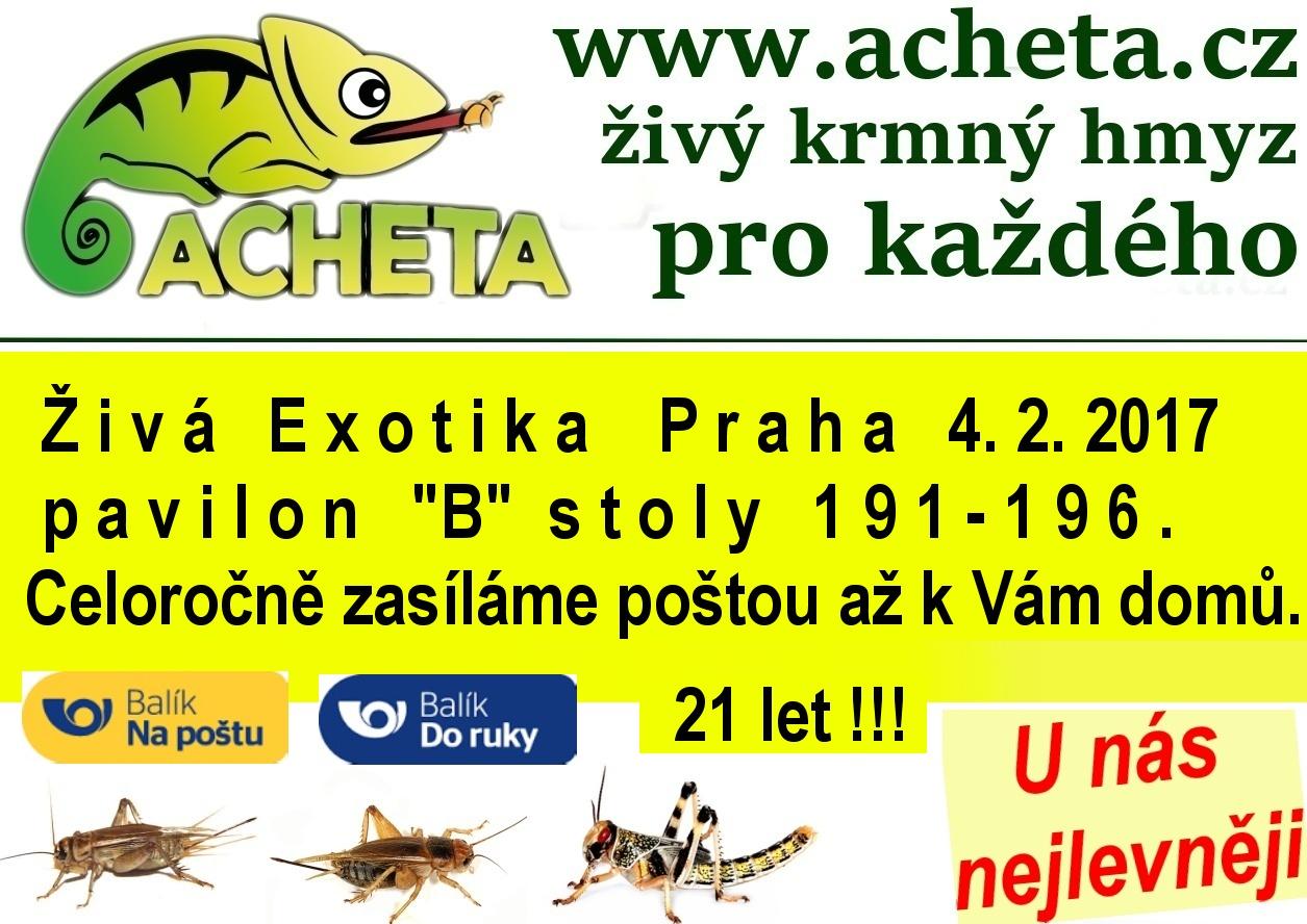 ŽIVÁ EXOTIKA Praha - Holešovice v sobotu 4. února 2017