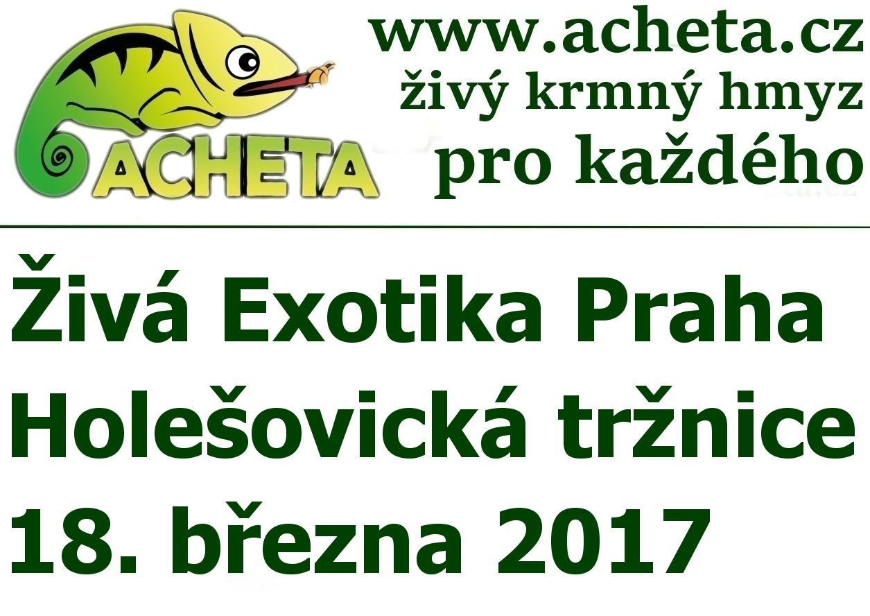 ŽIVÁ EXOTIKA Praha - Holešovice v sobotu 18. března 2017