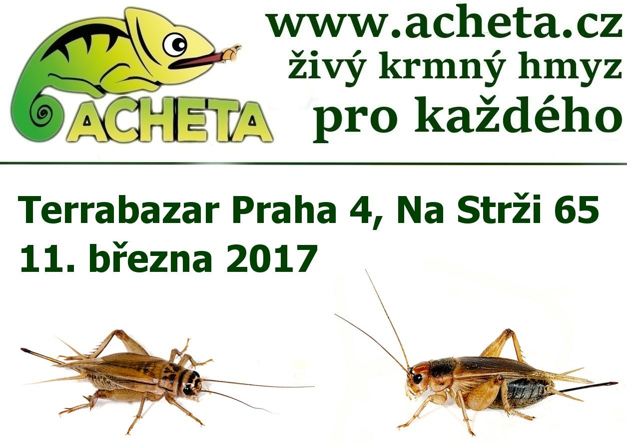 Terrabazar v Praze 11. března 2017 - Konferenční centrum City