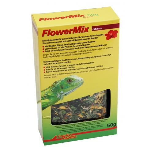 Flower Mix Lucky Reptile