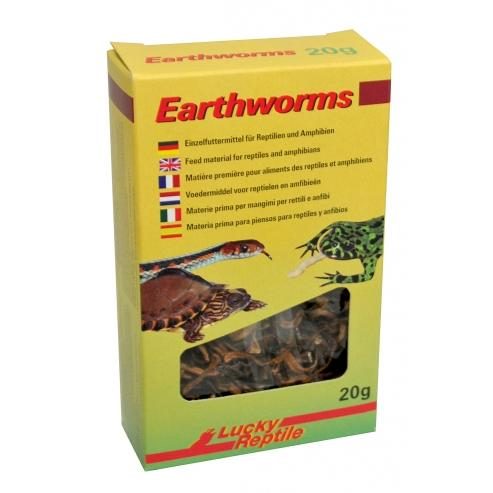 Lucky Reptile Earthworms 10g