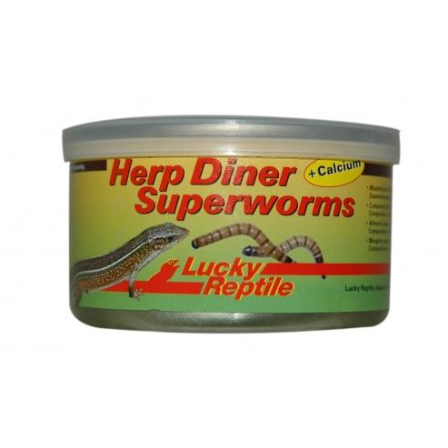 Lucky Reptile Herp Diner Superworms 35g