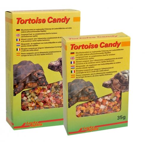 Tortoise Candy Lucky Reptile